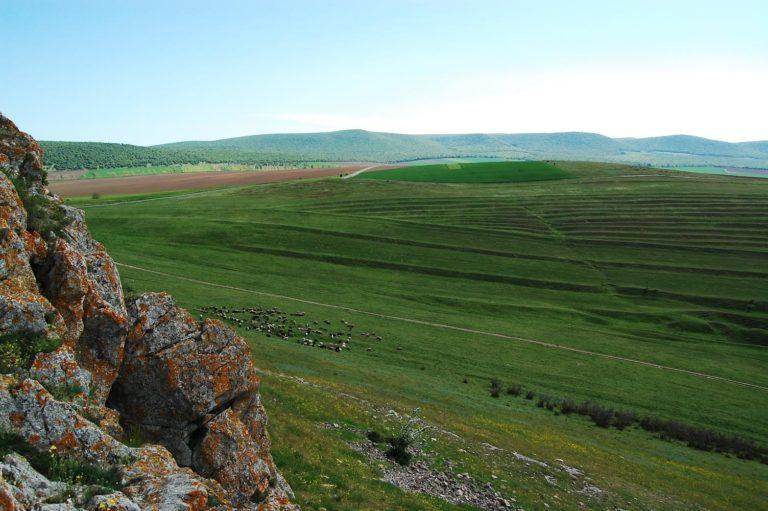 Dealuri în arealul Razim