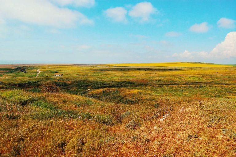 Vedere la Capul Doloșman
