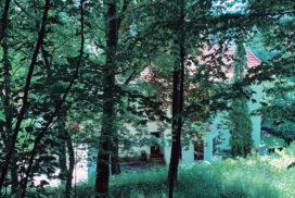 Vila din spatele pădurii