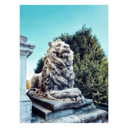 Leul care păzește intrarea în palatul Marincu din Calafat