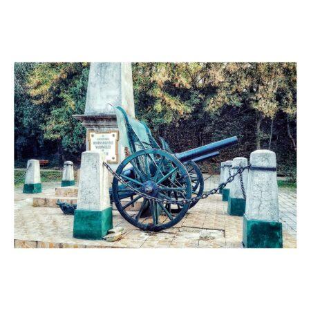 Tunurile capturate în timpul Războiului de Independență au fost furate de nemți în timpul Primului Război Mondial; In locul lor au fost aduse alte doua tunuri, tot prada de razboi, dar luate de la nemti, orientate cu tevile spre Vidin, sunt de fabricatie germana, marca Fried Krupp Essen, model 1884