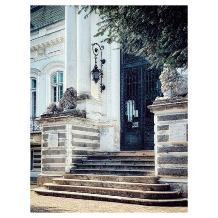 Detaliu asupra intrării în palatul Marincu