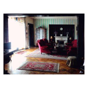 Șemineul din living - apartamentul domnului Stelian Ivașcu