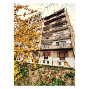 Locuința lui Petre Antonescu - Imobil Intrarea Eftimie Murgu - 2