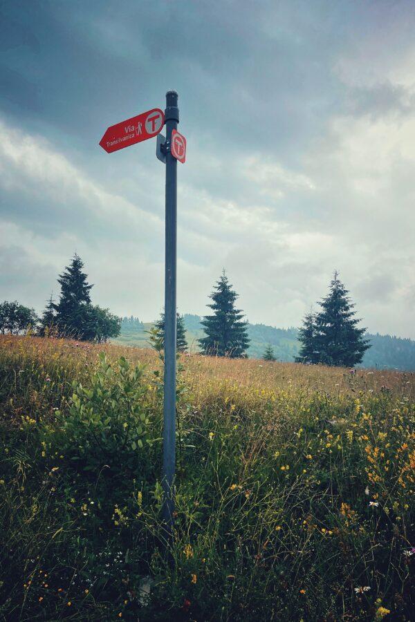 Indicator Via Transilvanica