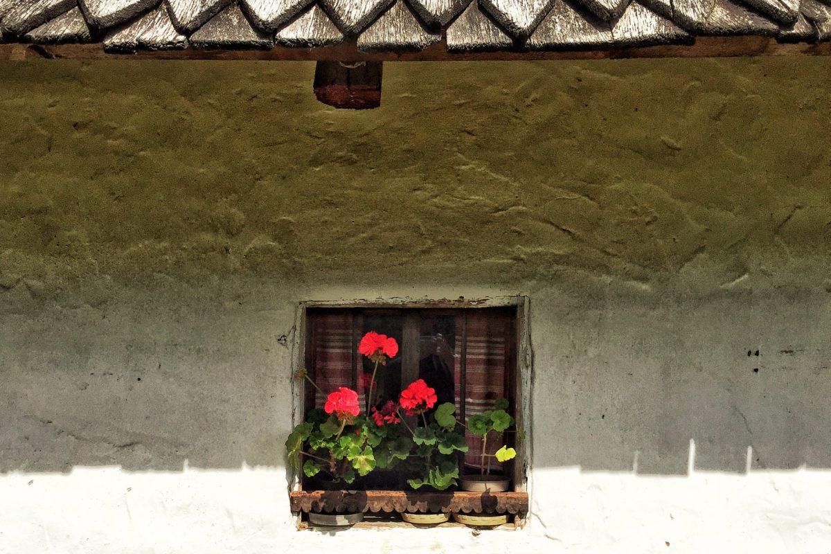 Detaliu casă tradițională secuiască - Muzeul Haszmann Pál